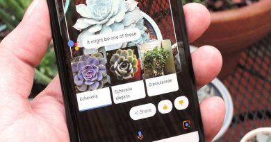 Google Lens Tunjukkan Bagaimana Kecerdasan Buatan Jadikan Hidup Lebih Mudah
